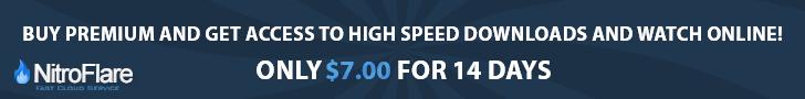 Buy Nitroflare Premium